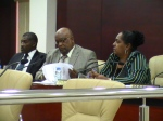 theo heyliger's plans to destroy the coalition appears to have failed photos judith roumou patrick illidge romaine laville dr lloyd richardson (98)