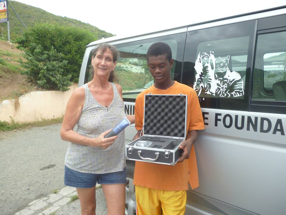 st maarten animal welfare kills animals for profit