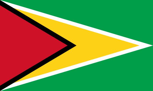 guyanese now visas to visit st maarten
