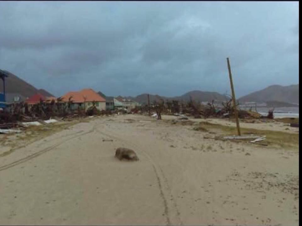 Published September 7 2017 At 960 X 718 In 9 NEW PHOTOS Orient Beach French Saint Martin Hurricane