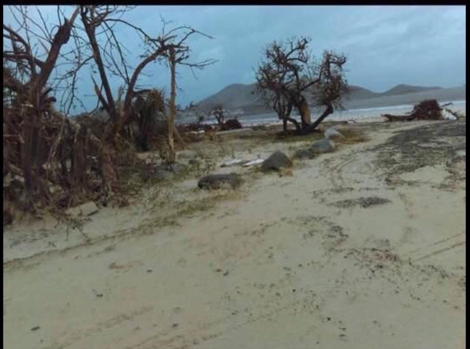 9 NEW PHOTOS Orient Beach French Saint Martin Hurricane Irma 2017